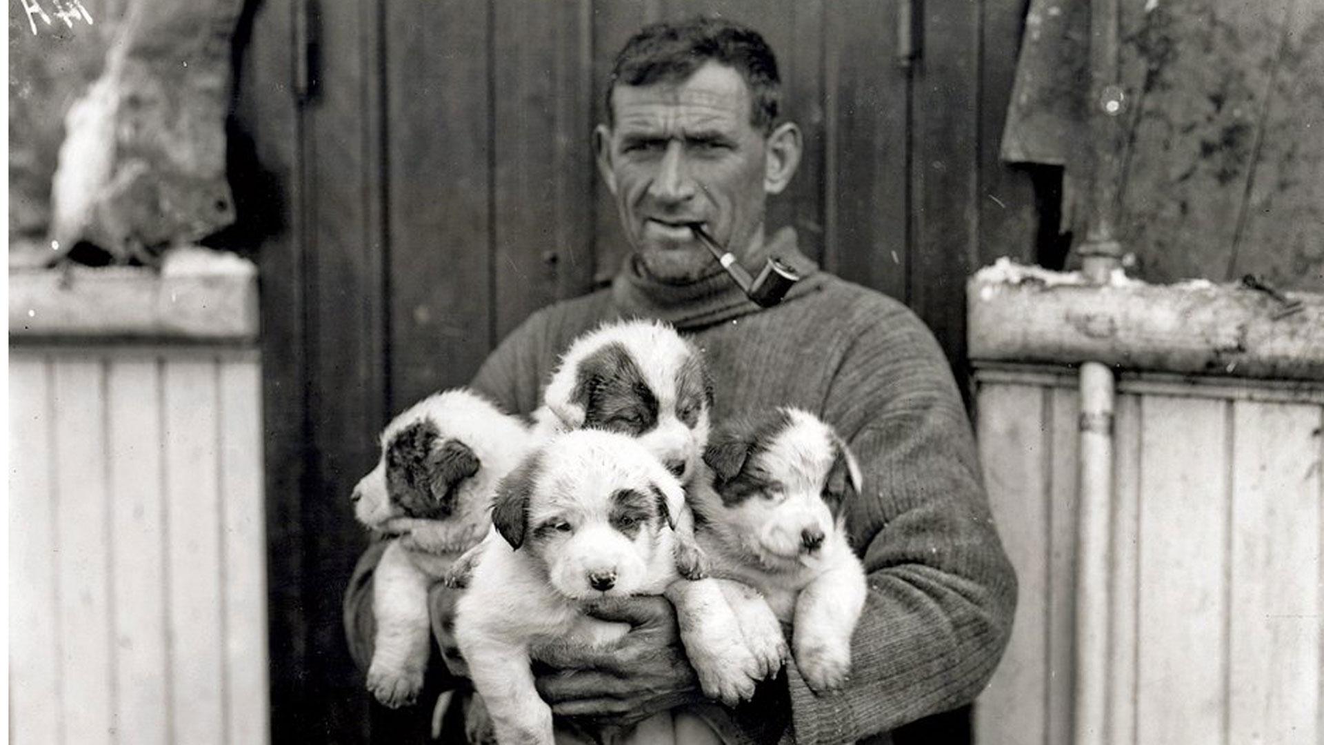 Video Promotion – Tom Crean's Pups